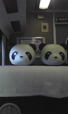 panda_train1.jpg